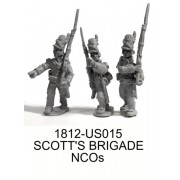 Scott's Brigade NCOs in Roundabouts