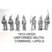 US UNIFORMED MILITIA COMMAND, LAPELS